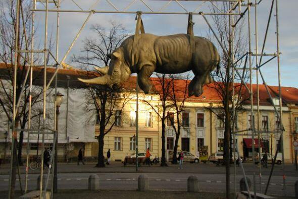 Rinoceronte colgado, Postdam (Alemania)