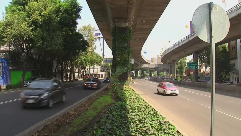 Los jardines verticales buscan mejorar la imagen de la Ciudad de México