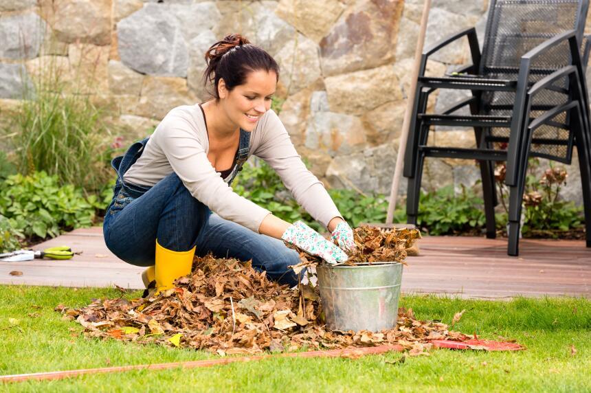 limpieza en otoño