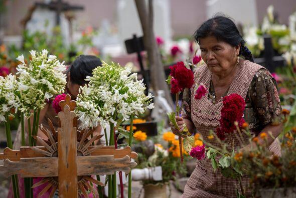 La delegación Tláhuac reportó que dos mil 500 personas han visitado hast...