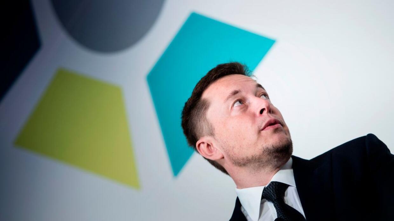 Musk se ha convertido en uno de los picnipales activistas contra la inte...