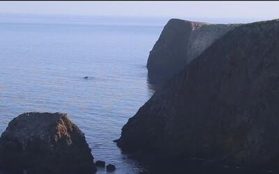 Channel Islands, un paraíso natural único en California