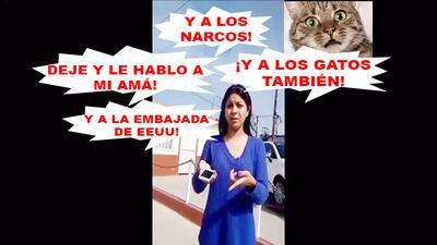 'Lady Doctora' llama gatos a policia, intenta sobornarlos y amenaza con...