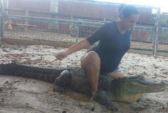 Comenzó a alimentar a los reptiles hasta que decidió que lo suyo era la...