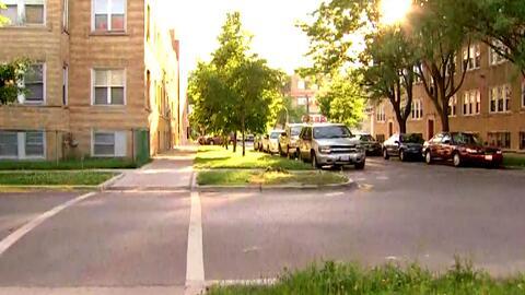 El cadáver de un perro tirado en la calle indigna a la comunidad de Chic...