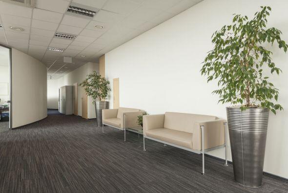 Cambio de hábitat. Muebles que quizá no fueron pensados para la decoraci...