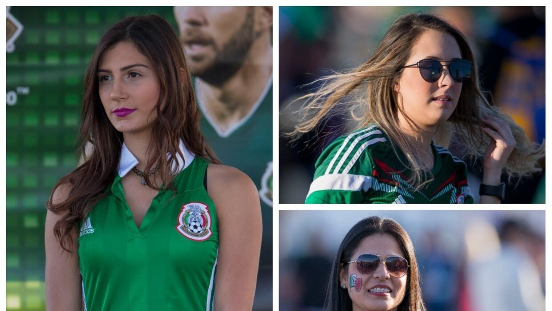 Candidatos, opciones polémicas y descartes que reemplazarían a Osorio en...