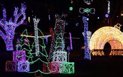 El zoológico se ilumina con casi un millón de luces, en un...