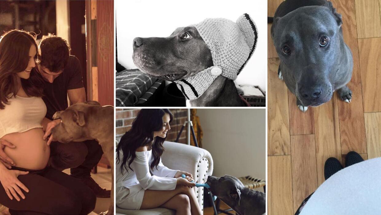 Zuria Vega y su mascota 'Perrou'.