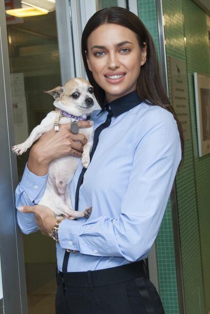 ASPCA es una organización sin fines de lucro que tiene como objetivo pre...