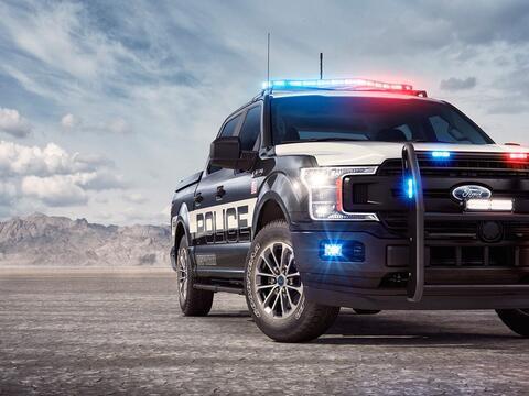Subastan esta edición única del Ford Raptor por $300,000 MountainLion_Ga...