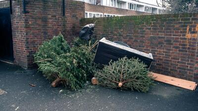 Hasta el 13 de enero los neoyorquinos podrán desechar su árbol de Navidad gratuitamente
