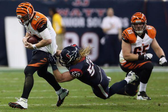 Houston Texans vs Cincinnati Bengals