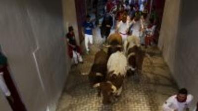 La 'Pamplonada' es imitada en otras regiones del mundo.