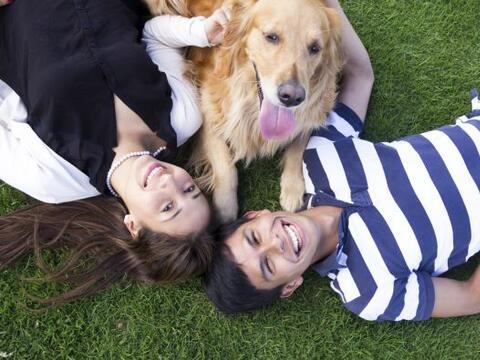 Tener una mascota incrementa nuestro bienestar emocional además d...