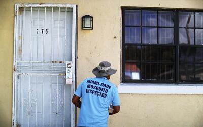 En el condado de Miami-Dade las autoridades sanitarias han llevado a cab...