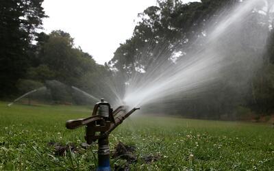 Emiten alerta sobre escasez de agua en el sur de Florida y piden ahorrar
