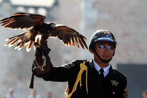 Un soldado sostiene un águila sobre su brazo durante el desfile en la pl...