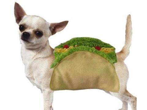 Este 31 de Marzo es el Día del Taco Mexicano. ¿Cómo...