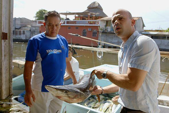 El propio Hernández le relató al doctor Juan su experiencia personal con...