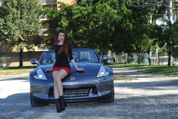 'La primera, es que el capot suele estar muy caliente, pues el auto estu...