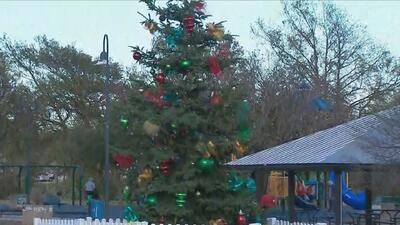 Encenderán el árbol de navidad en el Parque Woodlawn