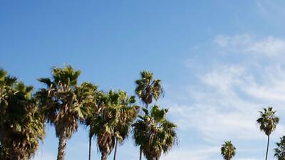 Martes despejado y soleado para el día de regreso a clases en Los Ángeles