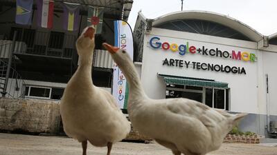 Google abrió un centro tecnológico en La Habana en marzo de 2016.