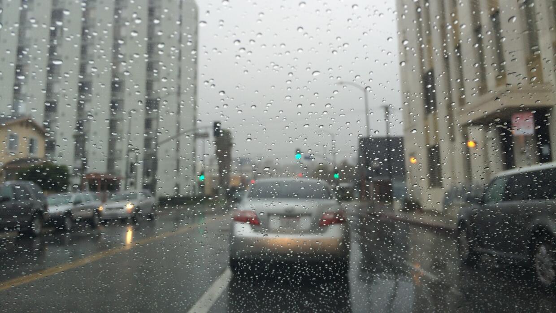 LA Rain
