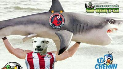 Los memes aplauden el liderato de Chivas