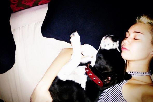 """""""Me encanta levantarme junto a una hermosa chica en mis brazos ;)""""- @Mil..."""