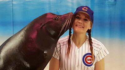 ¡La pasión por los Cubs llega hasta el acuario!
